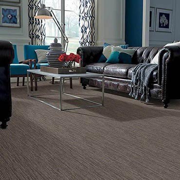 Anso® Nylon Carpet | Newberry, SC
